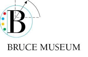 My visit to the museum essay